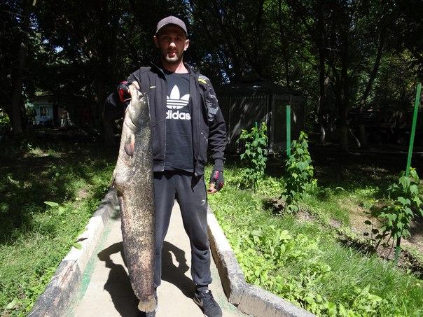 Отчет о рыбалке 14/15-06-2016