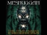 Meshuggah - Quant's Quantastical Quantasm