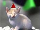 joyeux noel par des chats
