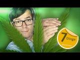 Kiffen - 7 Dinge, die Sie wissen sollten! - Quarks &amp Caspers Cannabis Doku