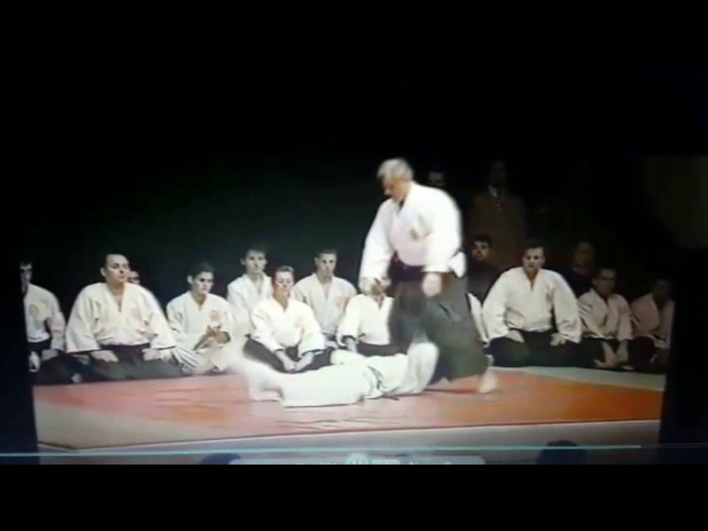 Ljubomir Vracarevic / RARE VIDEO / Founder of REAL AIKIDO