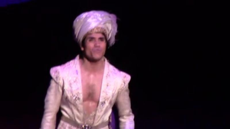 Aladdin. Broadway, 04.11.2014 5/9