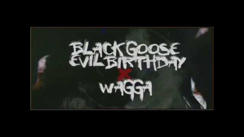 BLACKGOOSE 1 YEAR PARTY X WAGGA