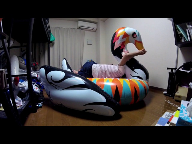 Inflate and ride on the FunBoy colorful swan