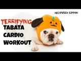Устрашающая Табата - Интервальная Кардио Тренировка. Tabata, Tabada, #Halloween Special: Terrifying Tabata Cardio Interval Workout!