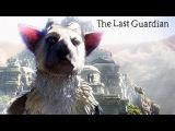 The Last Guardian : A Primeira Meia Hora