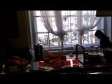 Санкт Петербург кафе Гаура