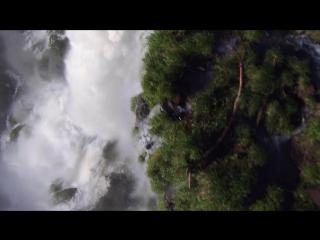 BBC_ Планета Земля какой вы ее еще не видели_ Джунгли _ Planet Earth_ Jungles 20
