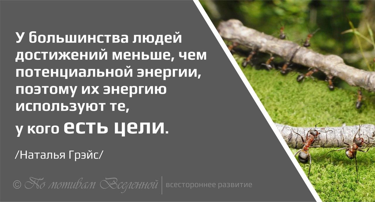 https://pp.vk.me/c636221/v636221286/3590a/XWIRsQYqVMc.jpg