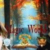 Magic World (Хогвартс, Шармбатон, Дурмстранг)