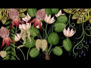 Animated Botanical Wallpaper (by James Paulley & Katie Scott)