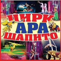 Цирк-Шапито в Ивангороде на Футбольном поле
