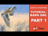 Acrylic Painting Tutorial Barn Owl (Part 1)