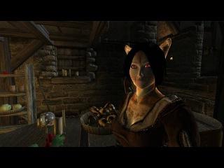 The Elder Scrolls - Oblivion The Beauty of mods - HD / HQ