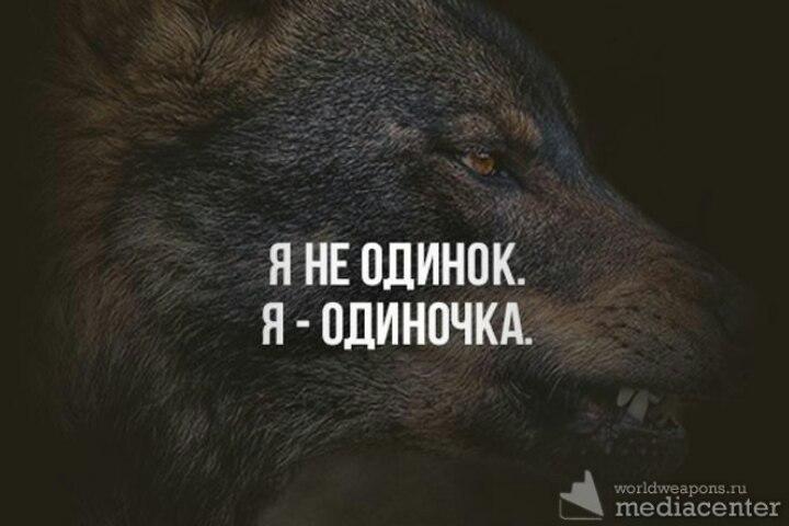 https://pp.userapi.com/c636222/v636222040/2e543/NV5FwqtY4rE.jpg