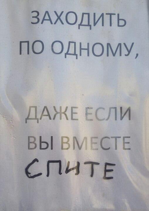 Евгения Новосельцева, Москва - фото №6