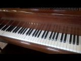 Живое пианино)))