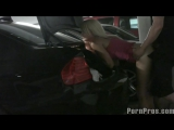 Public Violations 120_(Junk In The Trunk)