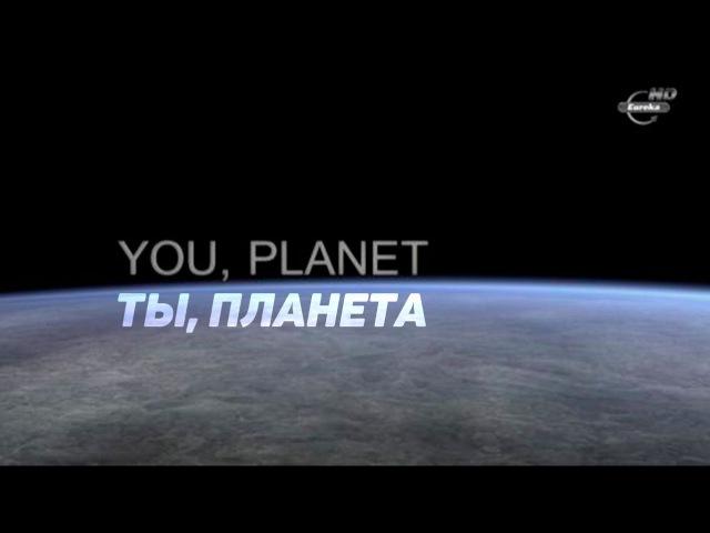Ты, Планета \ Научно-популярный фильм о Человеке и Планете