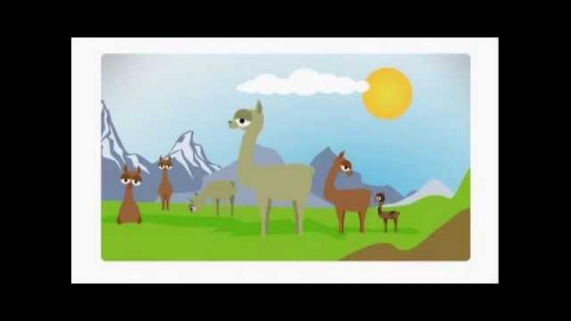 Zoo mix-ЛамаПингвин