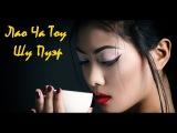 Заваривая чай / Лао Ча Тоу Шу Пуэр / Lao Cha Tou Puer
