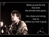 Damien rice - Animals were gone (Lyrics)