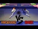 Real Life Tekken Fight | HWOARANG Vs BAEK | Flips Kicks