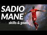 Sadio Mane ● Crazy Skills & Goals ● 2016-17 ● 1080p
