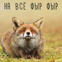 Софья Дядук