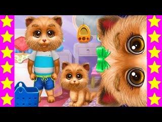 Мультики про кошку и ее котенка. Мультики про котиков. Детские мультфильмы. Мультик игра для детей.