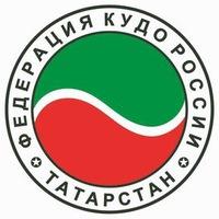 Логотип Кудо Татарстана