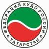 Кудо Татарстана