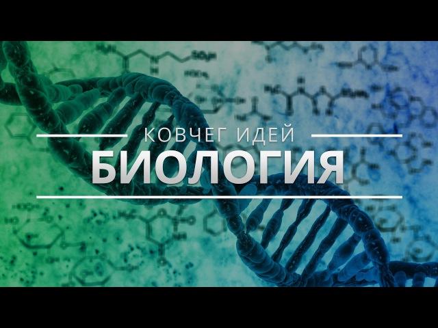 САМЫЕ ВАЖНЫЕ ИДЕИ ОБ ЭВОЛЮЦИИ | КОВЧЕГ ИДЕЙ - Александр Марков