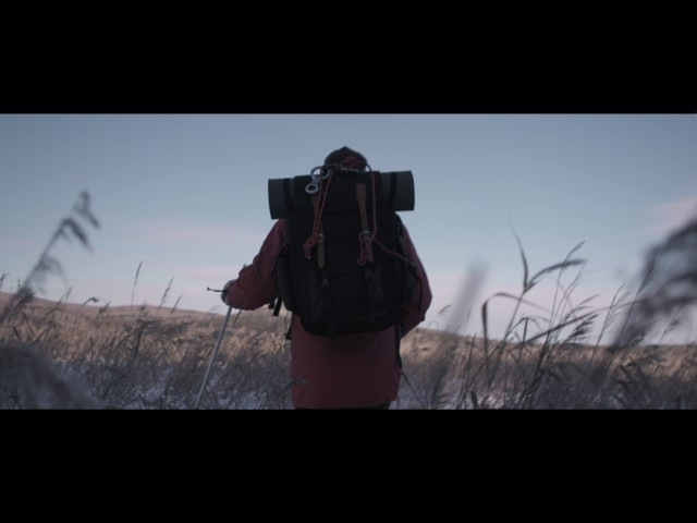 «За горизонт» 2017