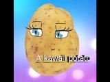 [meme]►A kawaii potato [ужасть хD]