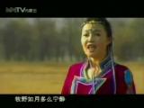Tsetsegmaa - Taliin mongol ail