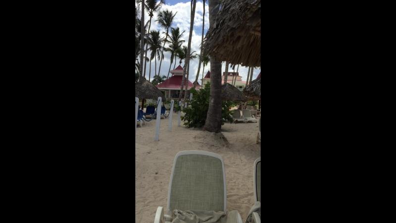Dominican Rep. » Freewka.com - Смотреть онлайн в хорощем качестве