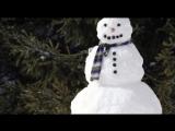 Карелия встретила лето снегом