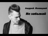 Андрей Леницкий ~ НЕ ЗАБЫВАЙ