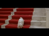 СИБИРСКИЙ ЦИРЮЛЬНИК  Художественный фильм (1998)  The Barber of Siberia