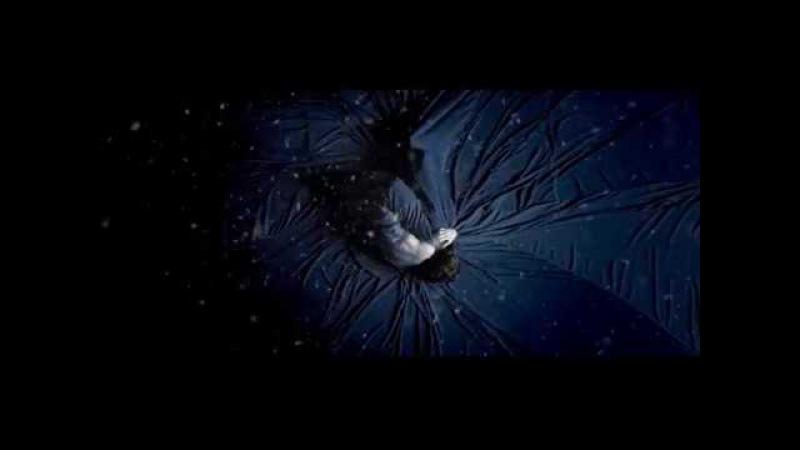 Amy Lee (feat Dave Eggar) - Lockdown