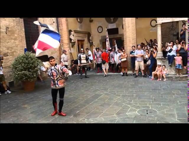LA COMPARSA DELL'ISTRICE NELL'ESIBIZIONE DEGLI ALFIERI NEL CORTILE DI PALAZZO CHIGI (2 Luglio 2015)