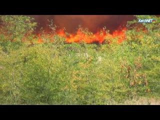 В Марьевке бушевавший больше четырех часов пожар выжег лес, поля и балки