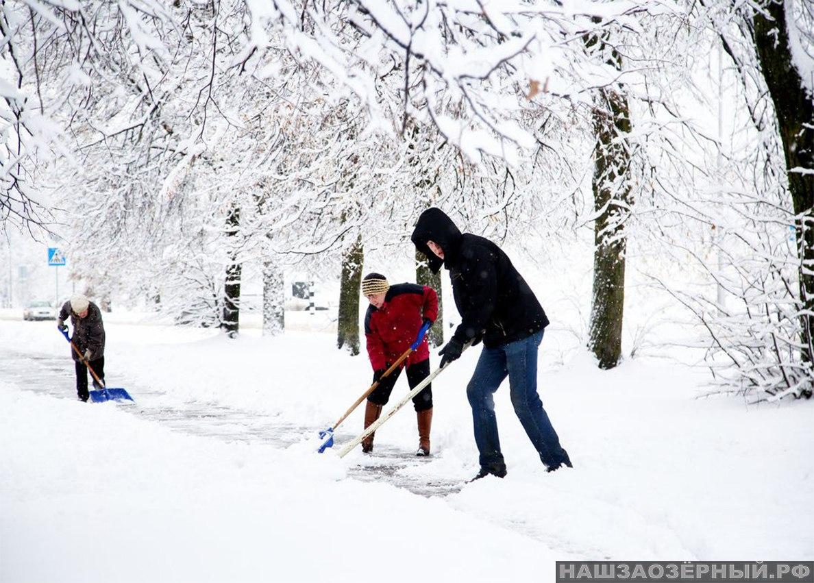 Снег в моём дворе. Кто должен чистить и как часто?