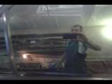 #55TONER 50% ULTRA VISION  Супрем Термо (Весь зад + передние бока)