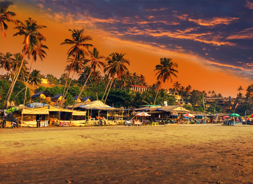 Индия, Север Гоа на 10 дней за 25055 руб. с человека