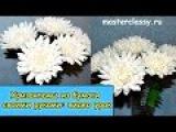 Amazing paper flowers tutorial. Цветы из бумаги. Хризантемы из бумаги своими руками видео урок