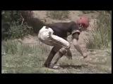 Video Lucu Banget Bikin Ngakak Sakit Perut   Try Not To Laugh Benteng Takeshi