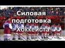 Скоростно Силовая подготовка к КХЛ хоккей