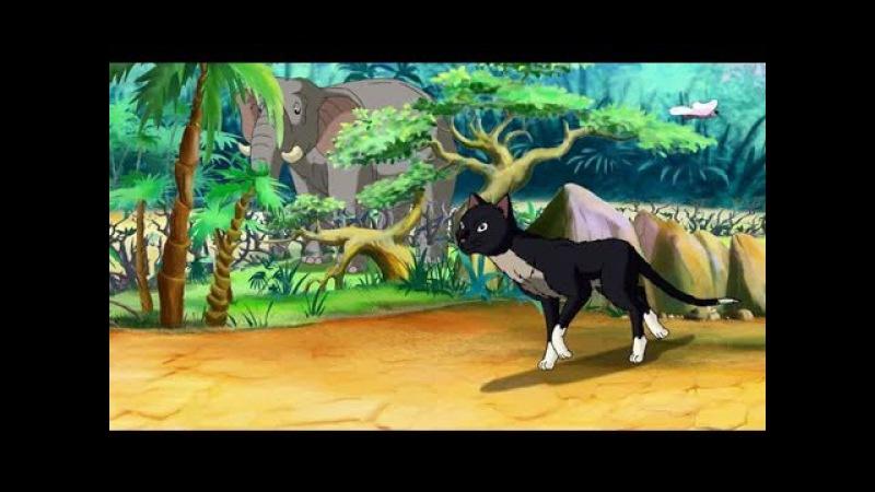 Уроки Тетушки Совы - Сказки африканской саванны (Грустный зверёк)